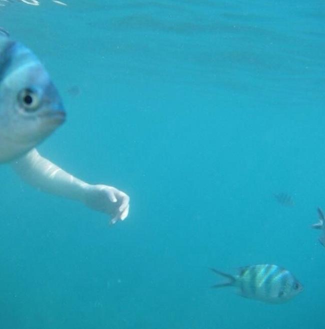 Загадочный глубоководный житель
