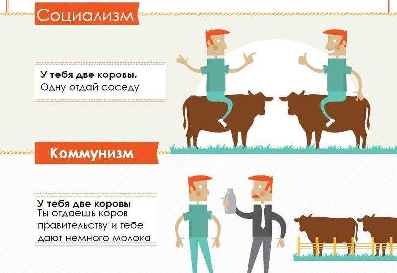 Типы обществ
